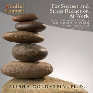 Mindful Solutions For Success And Stress Reduction At Work program