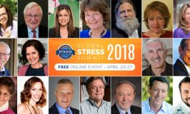 The Global Stress Summit