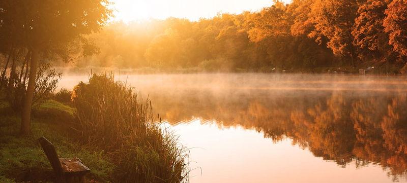 Inner Stillness by Doc Childre article
